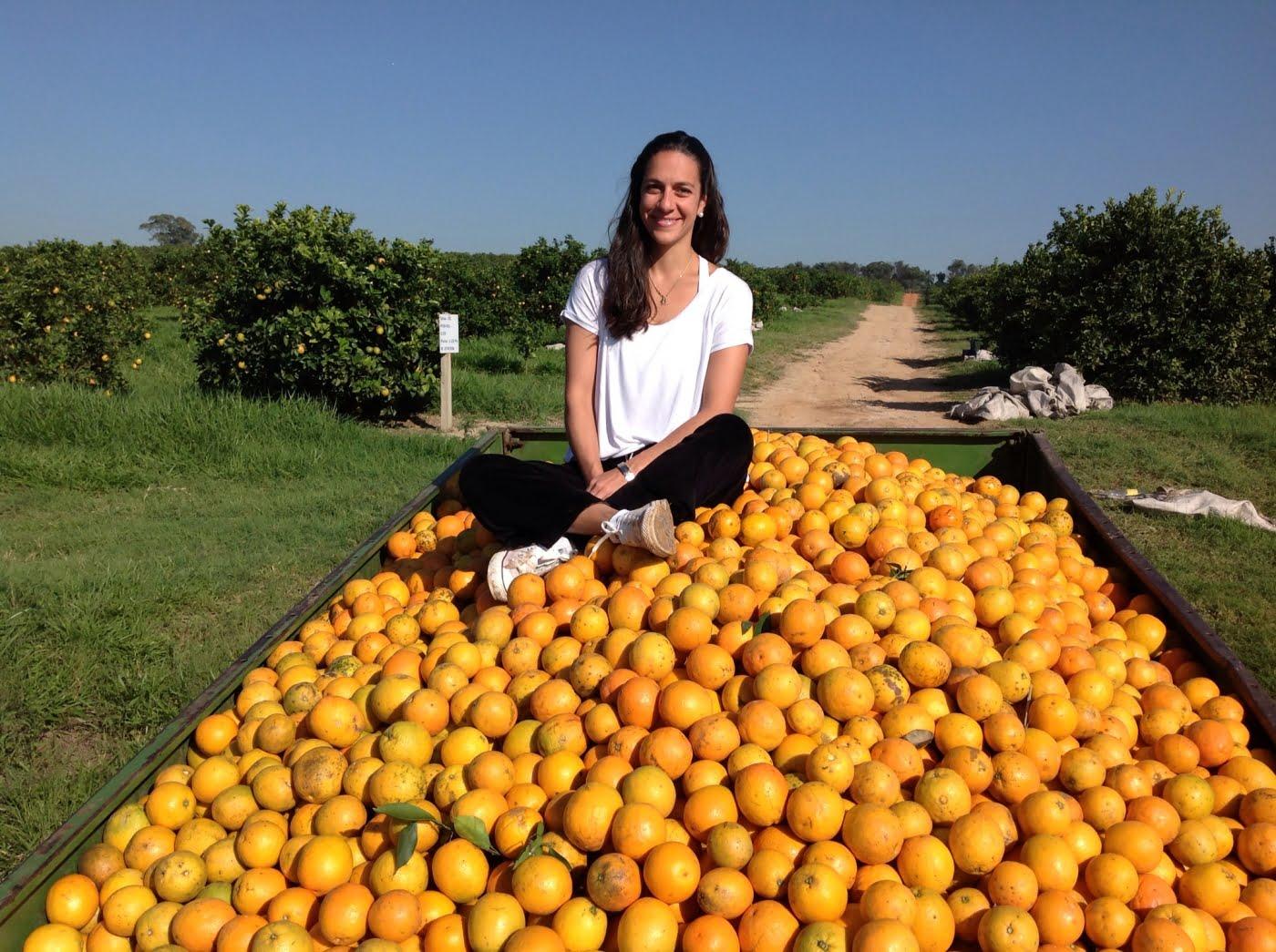 laranjas online