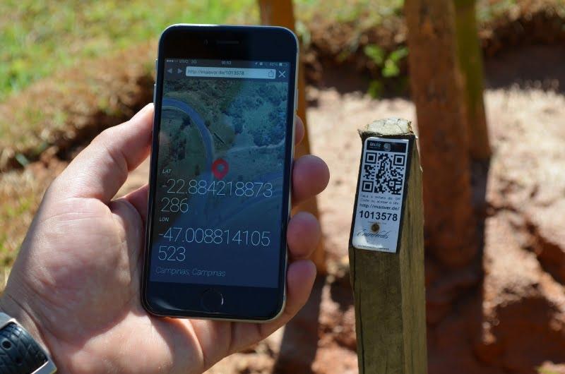 Os dados do reflorestamento ser acessados de celulares ou tablets, atualizados em tempo real pela Anubz.
