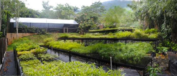 O Viva Floresta fica em Ilhabela, município do litoral paulista com 80% de sua área coberta por Mata Atlântica.