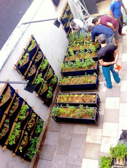 Montagem da horta do restaurante Chez Vous, um dos parceiros da Noocity.