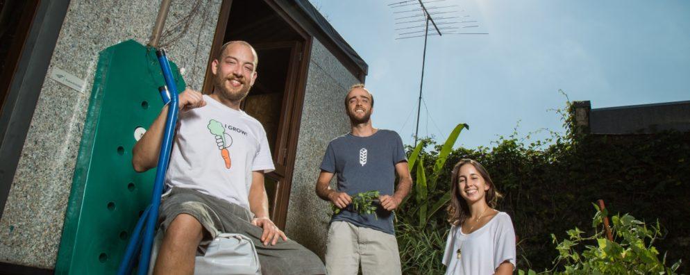 Pedro, Rafael e Laís, no escritório-quintal da Noocity. Para eles, é como se o tempo não tivesse passado.