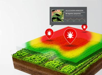 O software identifica e aponta as áreas mais sucetíveis a pragas, otimizando o trabalho do agricultor.