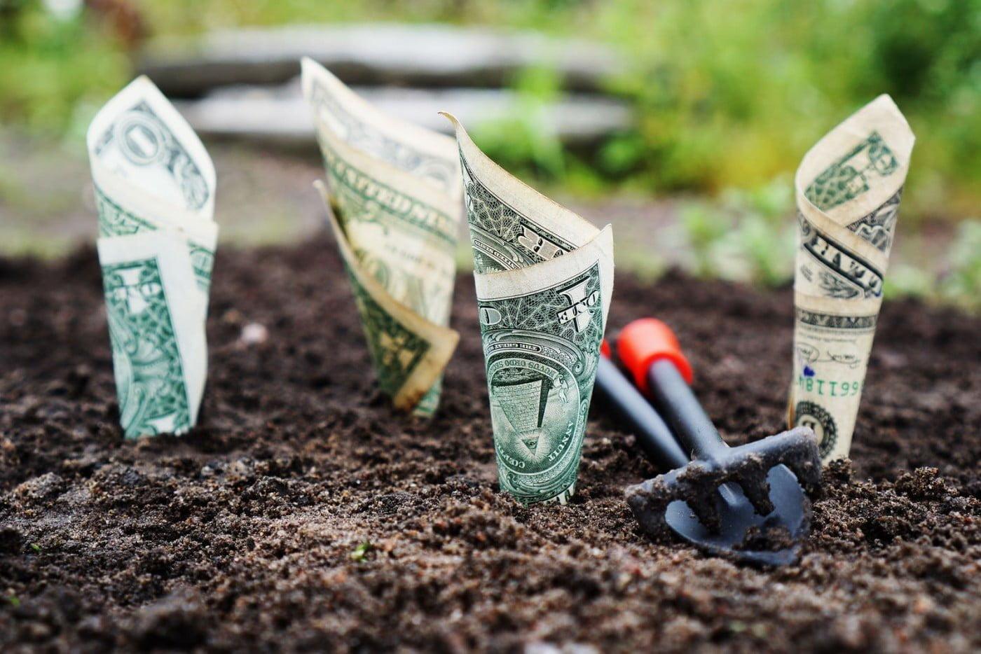 Bancar o seu próprio negócio requer planejamento e muito teste. (Imagem: Hamza Butt - Flickr/ Reprodução)