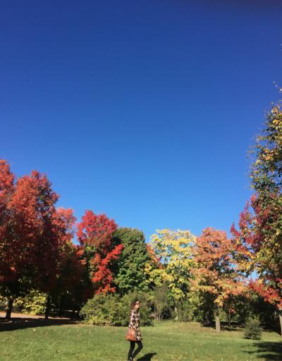 No Canadá, outono é outono. Um passeio no Jardim Botânico da cidade de Montréal ensina isso.