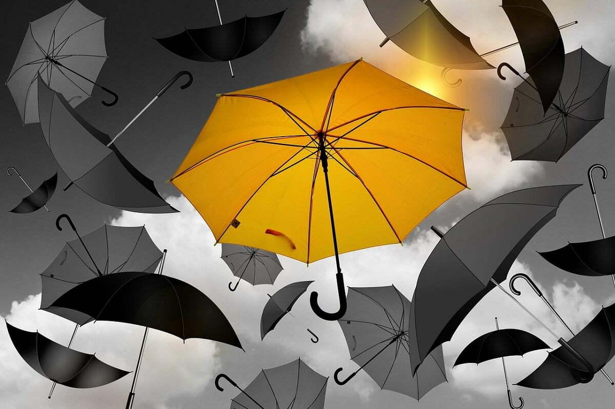 Escolha um nicho: focar não significa perder clientes (Imagem: Pixabay/Reprodução).