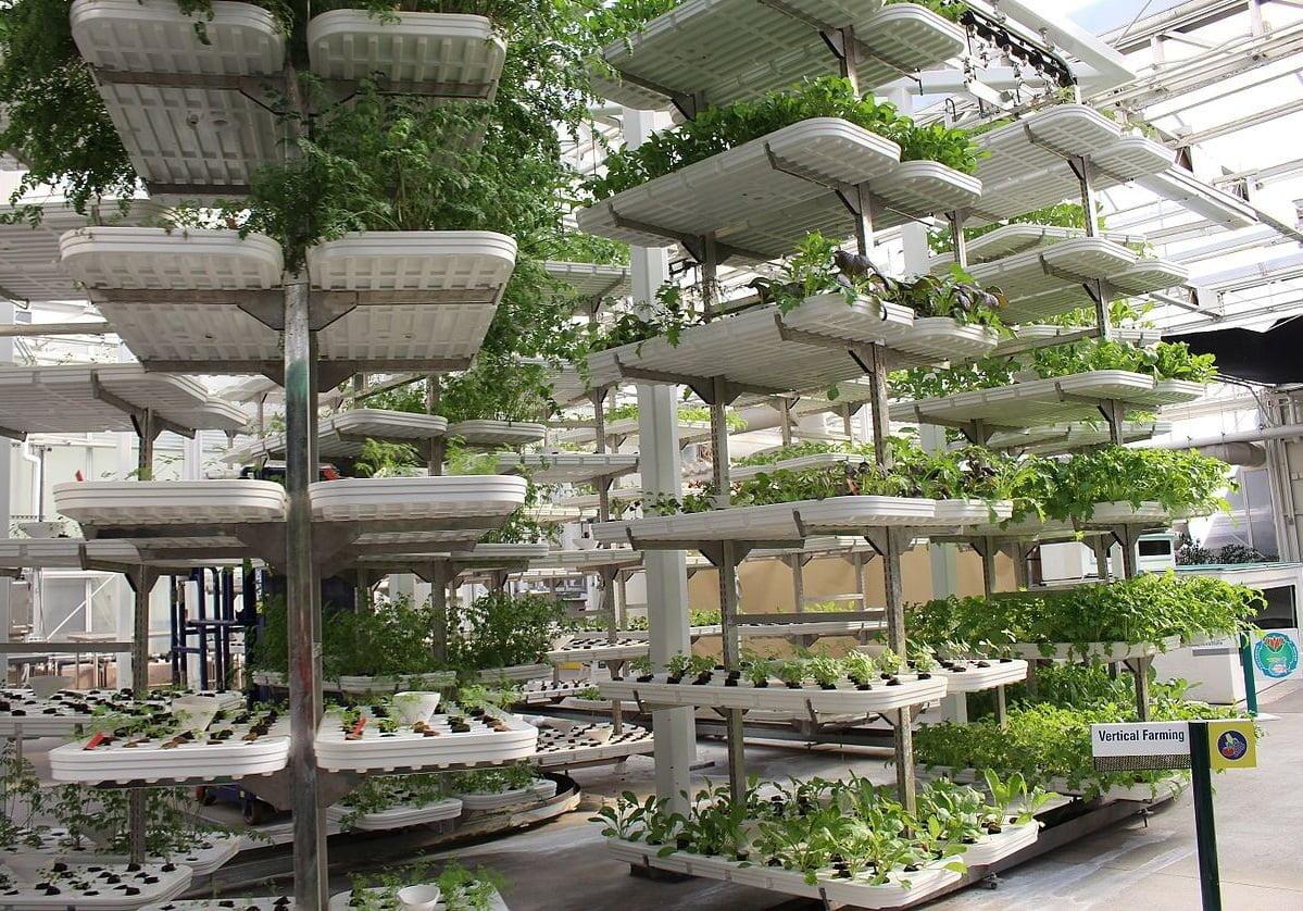 Uma das tendências para o maior controle da produção alimentar são as fazendas verticais, como a da foto acima.