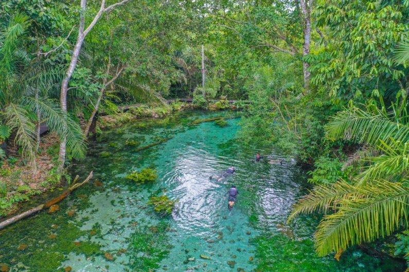 Nascente Azul, Bonito, Pantanal