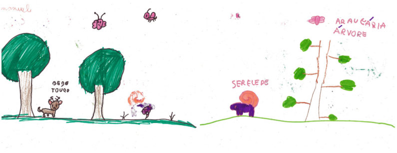 Desenhos da estudante Emanuele de Fátima Vieira